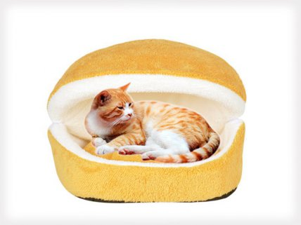 Multifunction Kitty Shack Cat Bed