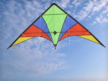 1.7M Outdoor Dual-Line Play Stunt Kite