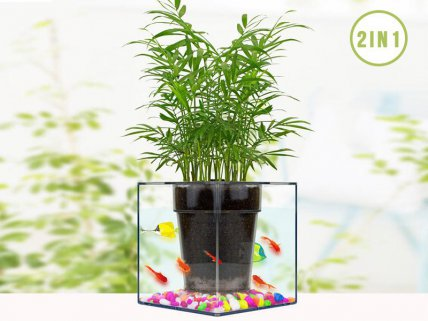 2 in 1 Self Watering Flower Pot / Fish Bowl