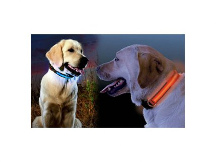 LED Dog Collars With Three Light Settings