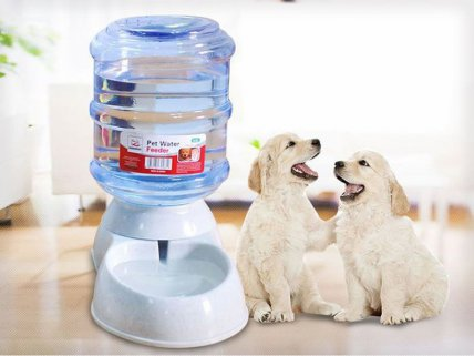 11L Automatic Pet Water Feeder