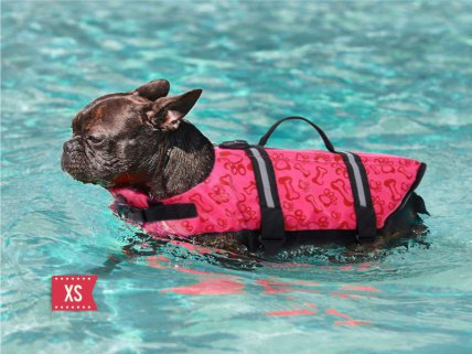 Pet Life Jacket - Rose Red - XS
