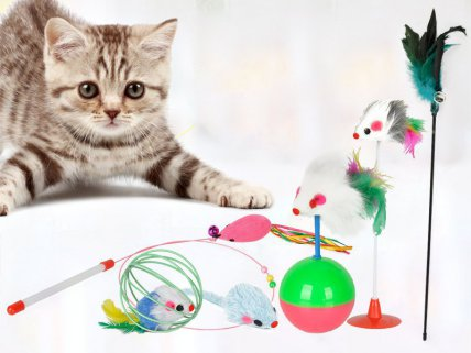 6pc Cat Toy Set