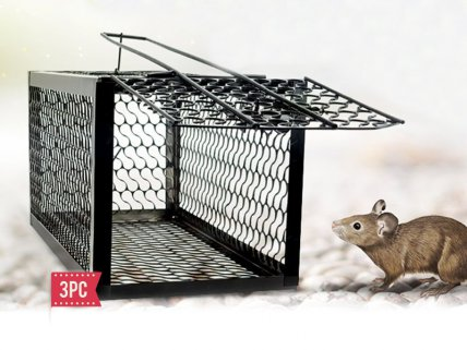 3pc Mouse Trap Cage