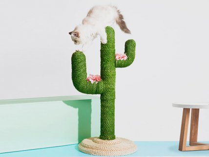 Cat Climbing Tree Scratching Post