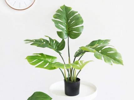 60cm Potted Artificial Monstera Plant