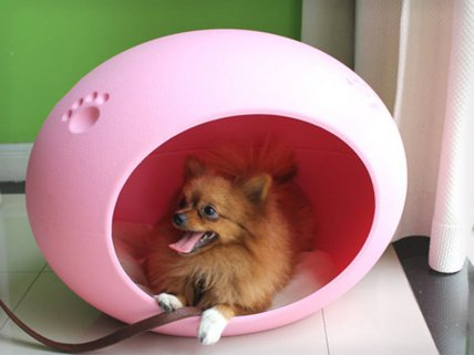 Egg-Shaped Pet House With Mat