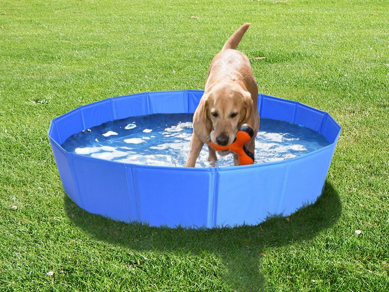 Pet Paddling / Bath Pool