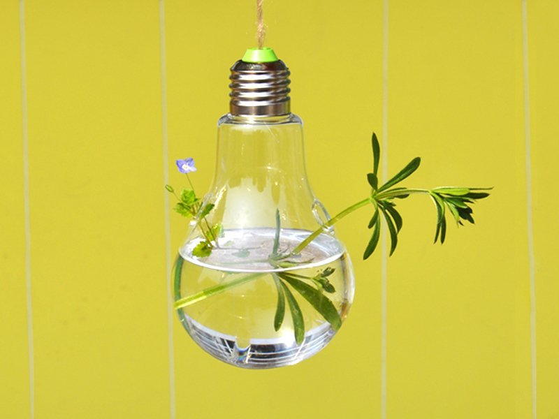 2 x Hanging Bulb-Shaped Vases