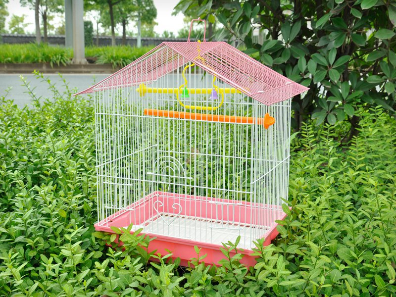 Square Bird Cage with Feeder & Removeable Tray