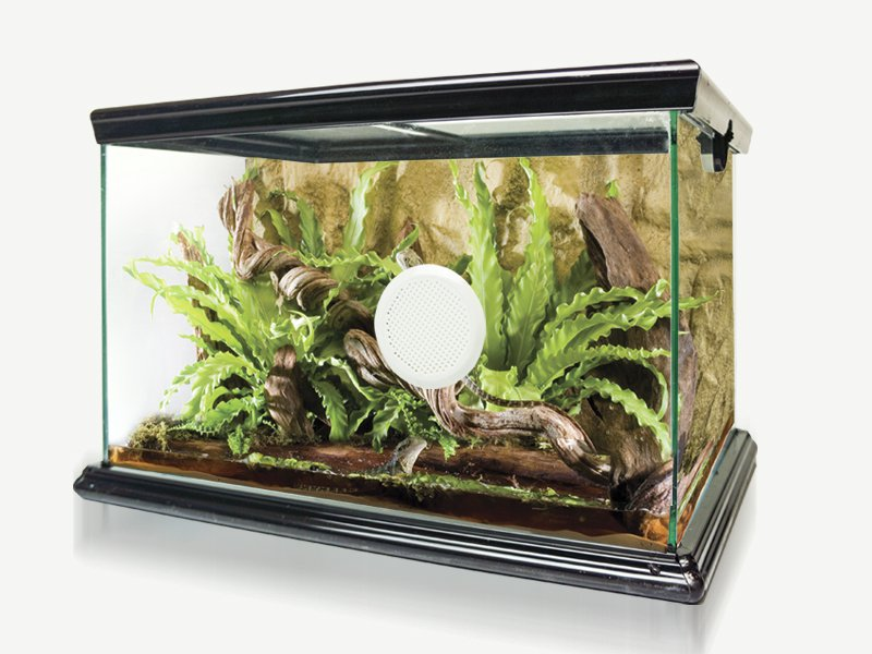 Advanced Glass Reptile Habitat