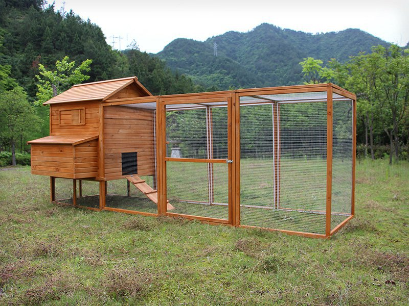 12FT Chicken Coop/House with  Nesting Box XXL