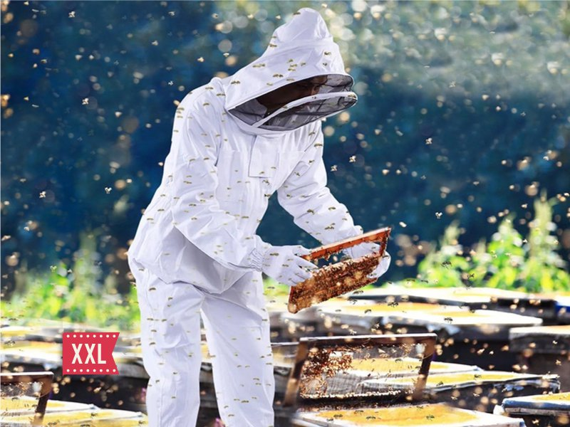 BeeKeeping Clothing Bee Suit with Veil Hood --XXL