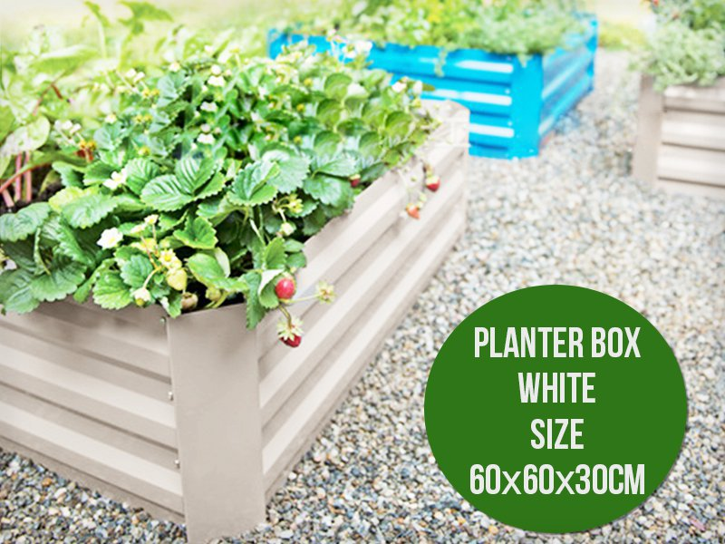 DIY Zinc Planter Box 60 x 60cm
