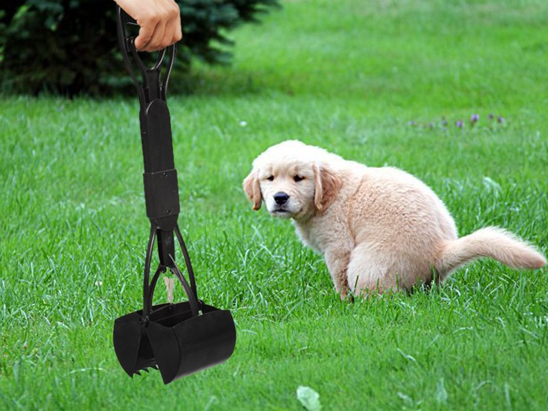 Foldable Pet Pooper Scooper