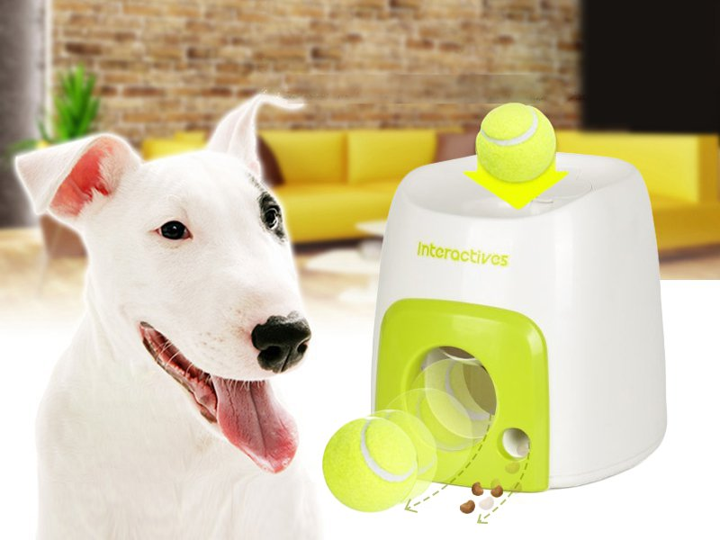 Dog Toy Reward Machine