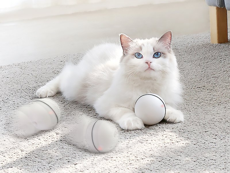 Cat Toy LED Ball - WHITE