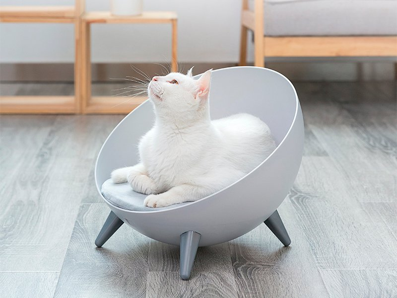 Modern Cat Chair Pet Sofa Bed