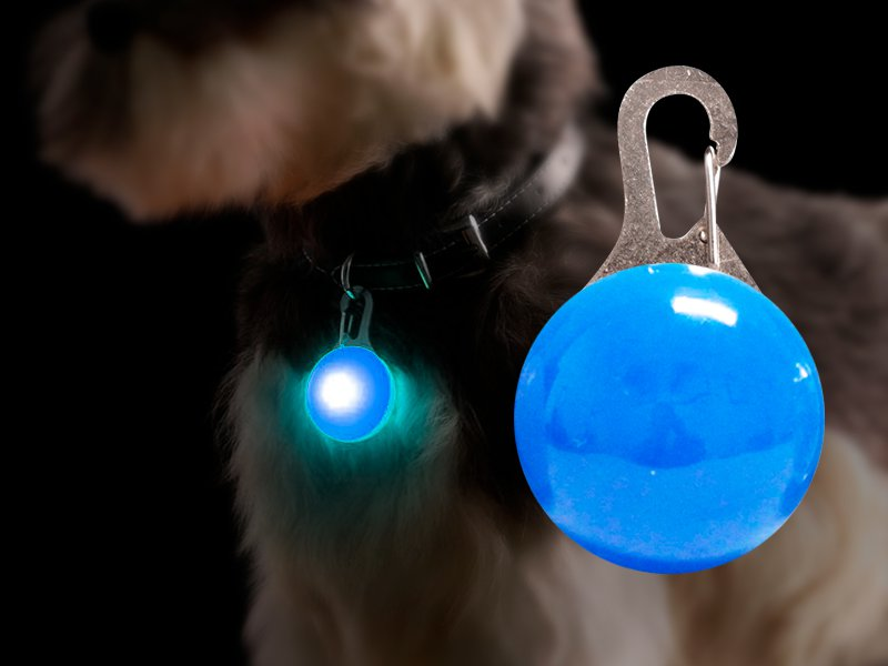 Flashing LED Pet Collar Pendant - Blue