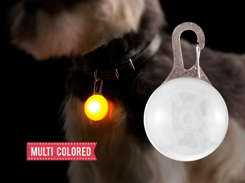 Flashing LED Pet Collar Pendant - Multi-Coloured