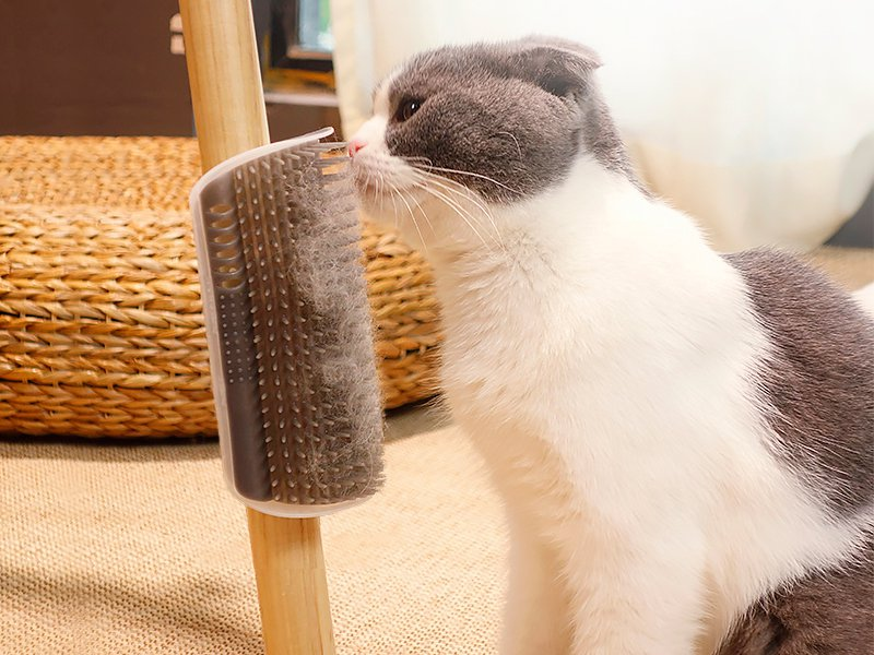 2 Pcs Cat Brush Corner Massage Pet Groomer