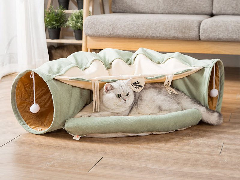 Foldable Cat Tunnel & Bed