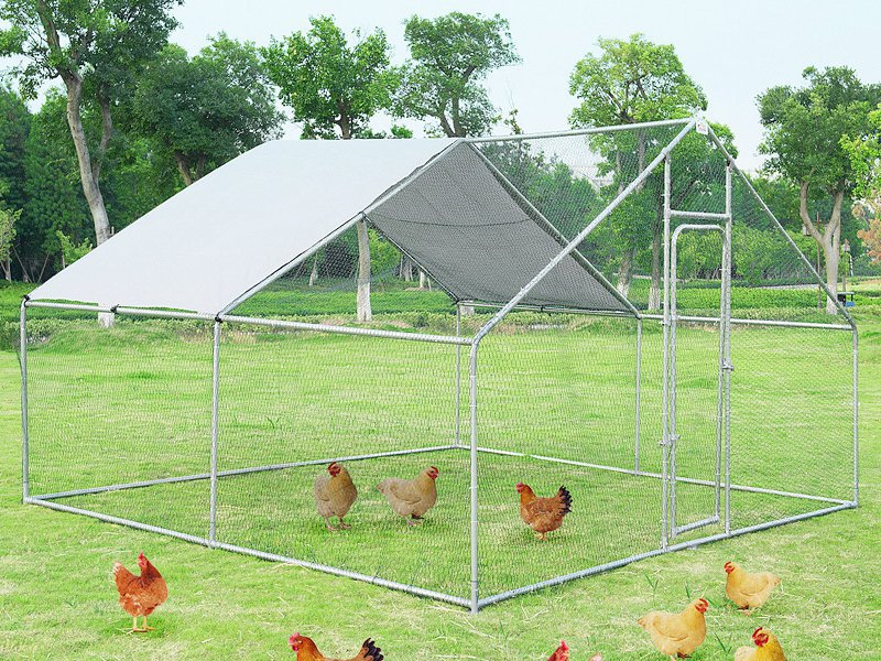 Metal Chicken Run - 4m x 3m