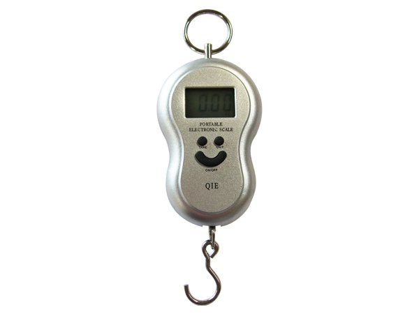 Digital fishing hanging weighing scales sliver crazy for Best digital fish scale