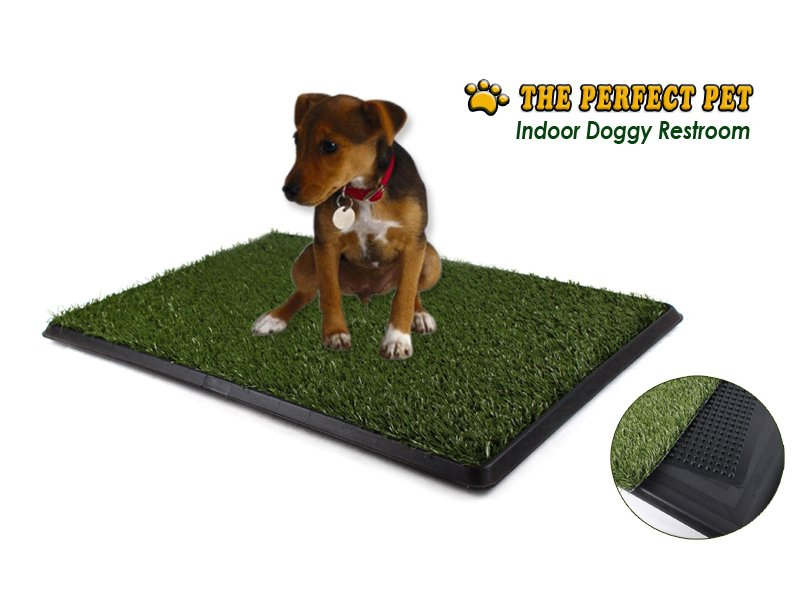 Indoor Pet / Dog Toilet / Pet-Loo