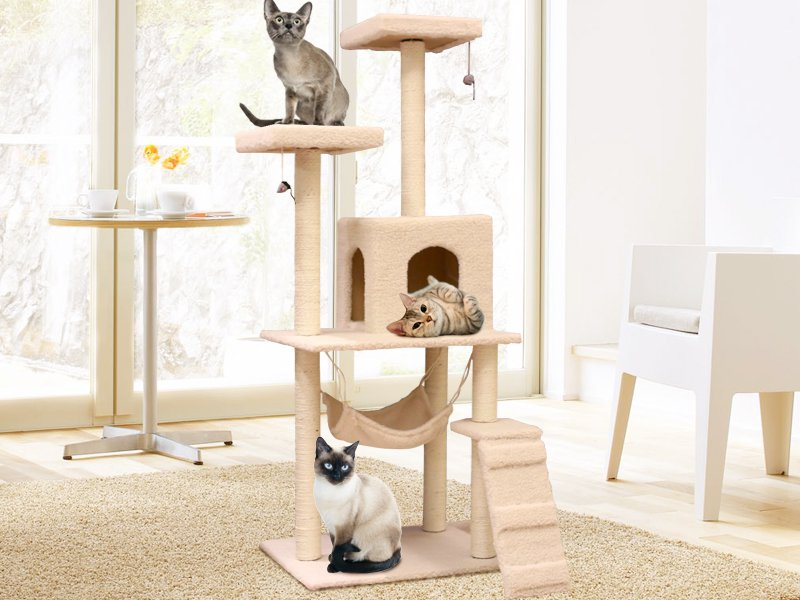 cat tree house with hammock   crazy sales   we have the best daily deals online  cat tree house with hammock   crazy sales   we have the best daily      rh   crazysales co nz